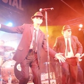 """The Australian Blues Brothers Live • <a style=""""font-size:0.8em;"""" href=""""http://www.flickr.com/photos/66500283@N05/51298038194/"""" target=""""_blank"""">View on Flickr</a>"""